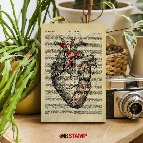 شاسی عکس هنرآناتومی طرح قلب کد 0004